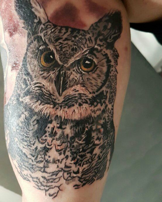 By Jacco - Owl